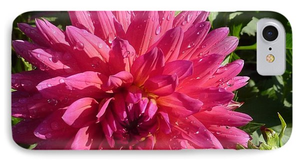 IPhone Case featuring the photograph Dahlia Pink by Susan Garren