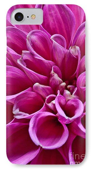 IPhone Case featuring the photograph Dahlia by Shirley Mangini