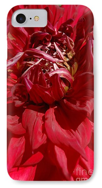 IPhone Case featuring the photograph Dahlia Viiii by Christiane Hellner-OBrien