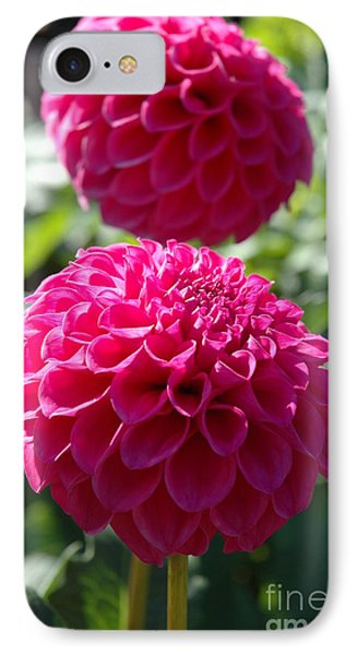 IPhone Case featuring the photograph Dahlia Xi by Christiane Hellner-OBrien