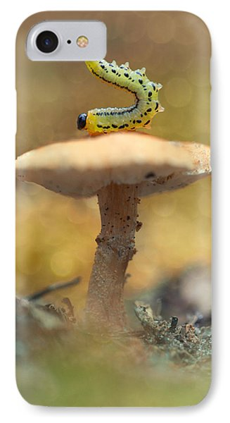 Daily Excercice IPhone Case by Jaroslaw Blaminsky