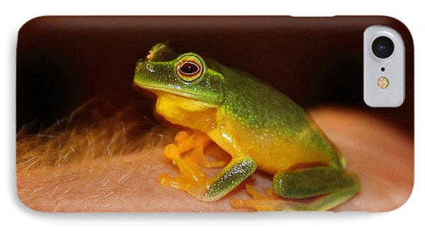 Dainty Tree Frog  IPhone Case