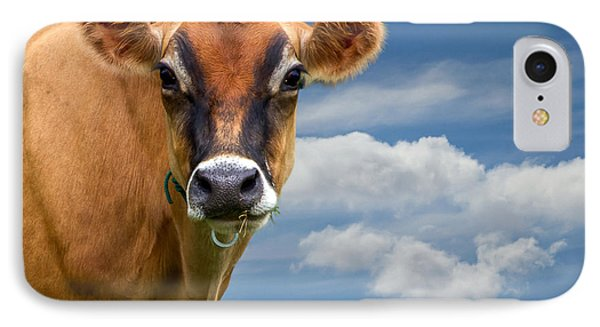 Dairy Cow  Bessy IPhone Case