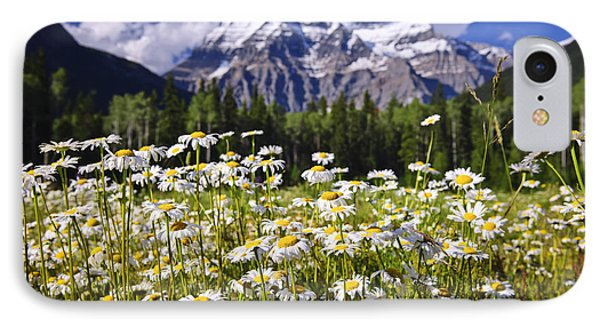Daisies At Mount Robson IPhone Case by Elena Elisseeva