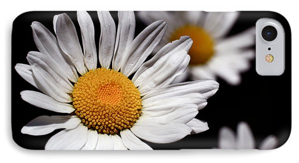 Daisies IPhone Case by Rona Black