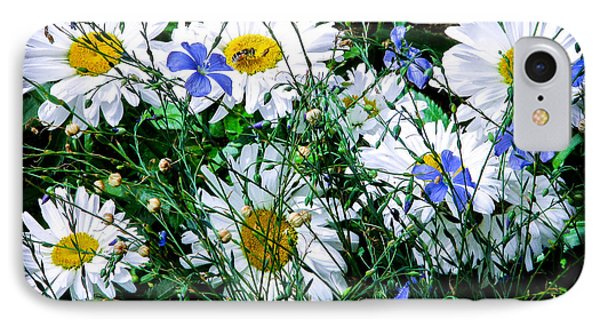 Daisies With Blue Flax And Bee IPhone Case by Roselynne Broussard