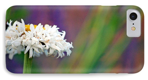Daisy At Attention IPhone Case by Cara Moulds