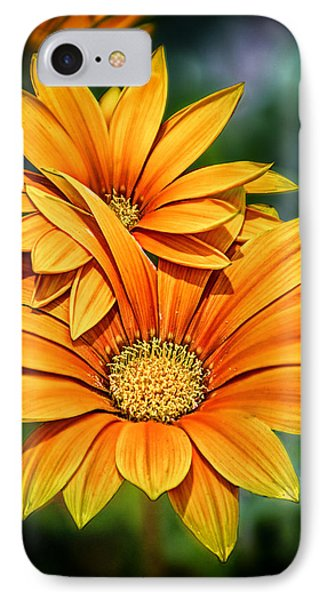 Daisy Blend IPhone Case