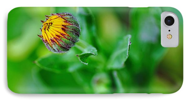 Daisy Bud Ready To Bloom Phone Case by Kaye Menner