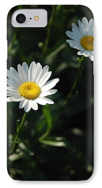 Daisy Days Phone Case by Suzanne Gaff