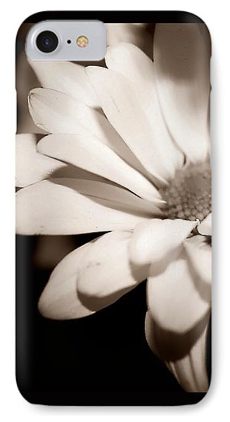 Daisy IPhone Case by Debra Forand