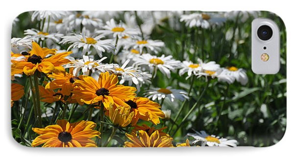 IPhone Case featuring the photograph Daisy Fields by Bianca Nadeau
