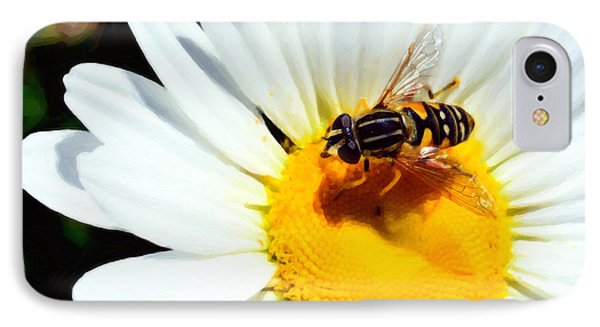 Daisy Flower With Fly IPhone Case