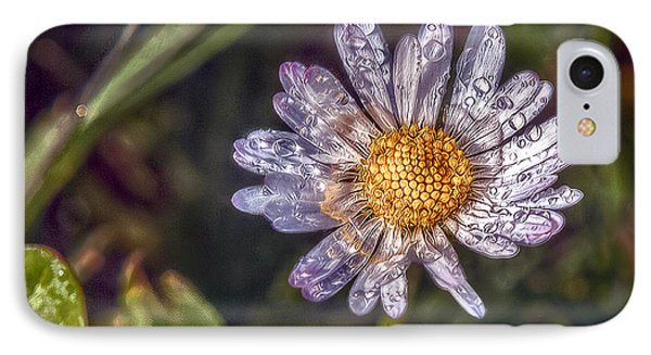 Daisy IPhone Case by Hanny Heim