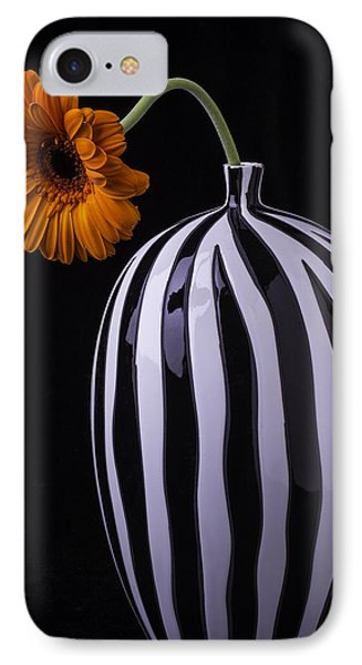 Daisy In Striped Vase IPhone Case by Garry Gay