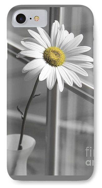 Daisy In The Window Phone Case by Diane Diederich
