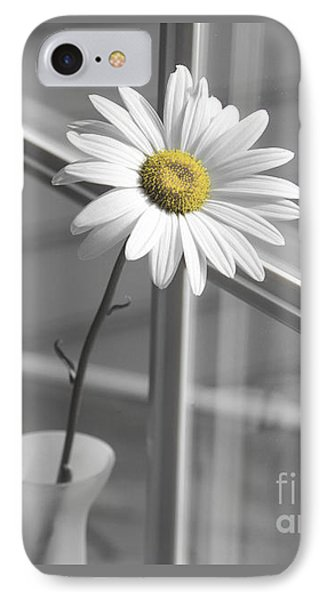 Daisy In The Window IPhone Case by Diane Diederich