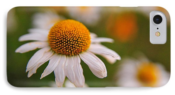 Daisy Power IPhone Case by Terri Gostola