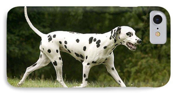 Dalmatian Running IPhone Case by Jean-Michel Labat