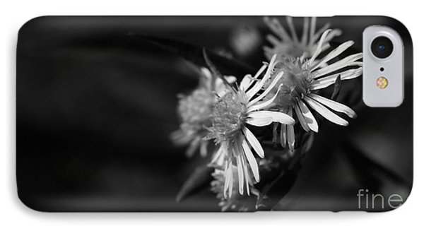 IPhone Case featuring the photograph Dames En Noir by Linda Shafer