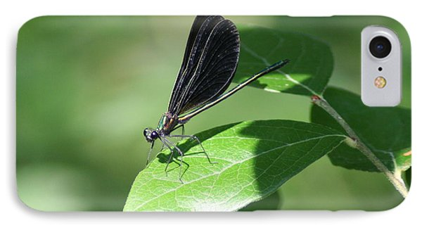 IPhone Case featuring the photograph Damselfly  by Karen Silvestri
