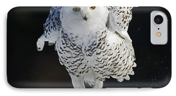 Dance Of Glory - Snowy Owl Phone Case by Inspired Nature Photography Fine Art Photography