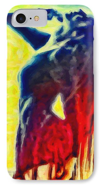 Dance Of Passion IPhone Case