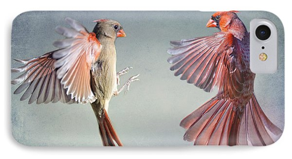 Dance Of The Redbirds IPhone Case