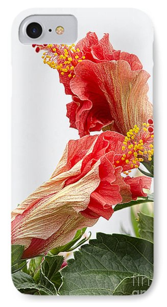 IPhone Case featuring the photograph Dancing Hibiscus by Wanda Krack