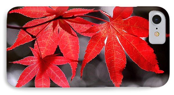 Dancing Japanese Maple Phone Case by Rona Black
