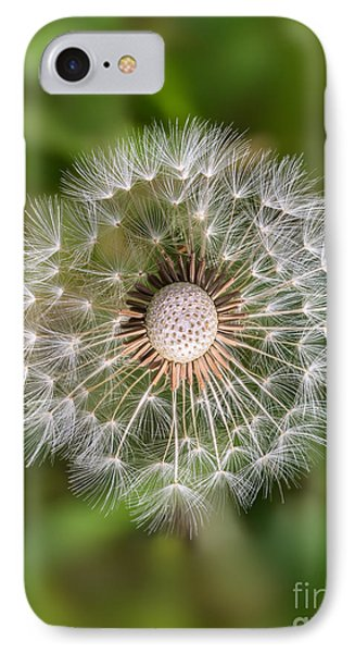 IPhone Case featuring the photograph Dandelion by Carsten Reisinger