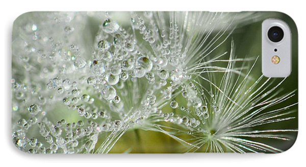 Dandelion Dew IPhone Case by Amy Porter