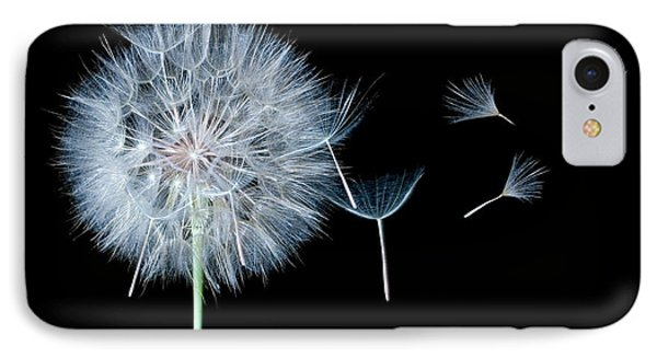 Dandelion Dreaming Phone Case by Cindy Singleton