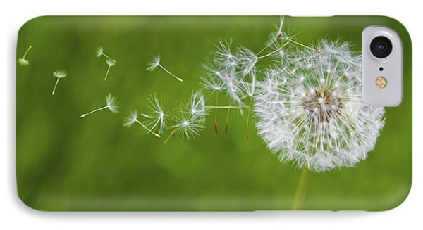 Dandelion In The Wind IPhone Case