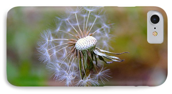 IPhone Case featuring the photograph Dandelion by Lisa L Silva