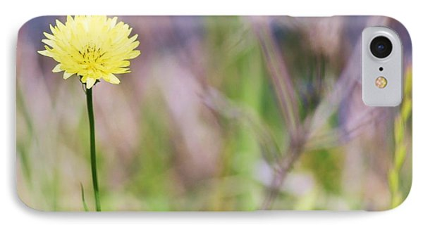 Dandelion Phone Case by Lorri Crossno