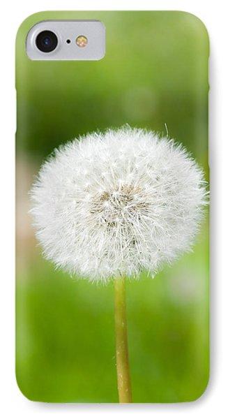 Dandelion Puffball IPhone Case