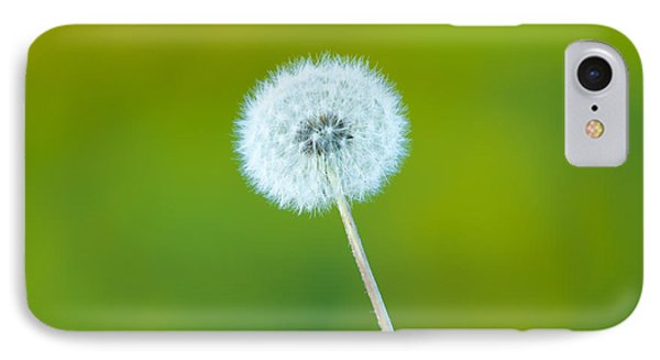 Dandelion IPhone Case by Sebastian Musial