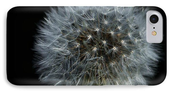 Dandelion Seed Head On Black Phone Case by Sharon Talson