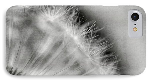 Dandelion Seeds - Black And White IPhone Case by Marianna Mills