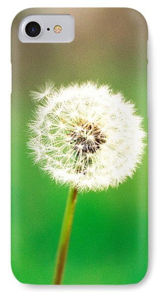 Dandelion Seeds, Close-up View IPhone Case by Panoramic Images