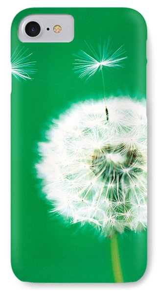 Dandelion Seeds Flying, Close-up View IPhone Case by Panoramic Images