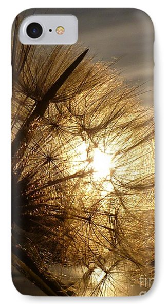 Dandelion Sunset IPhone Case