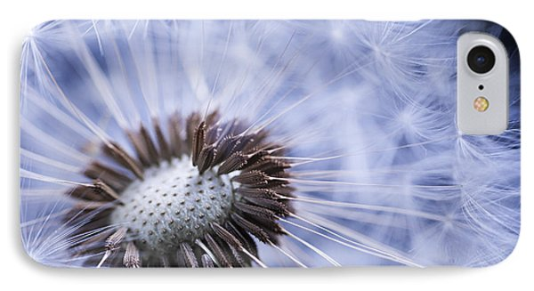 Dandelion With Seeds IPhone Case by Elena Elisseeva