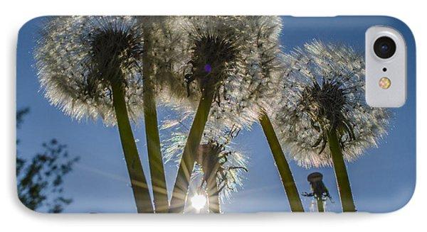Dandelions In The Sun Phone Case by Adam Budziarek
