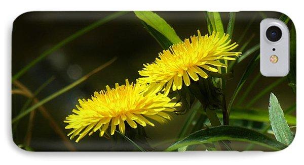 IPhone Case featuring the photograph Dandelions by Sherman Perry