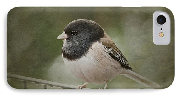 Dark-eyed Junco  IPhone Case