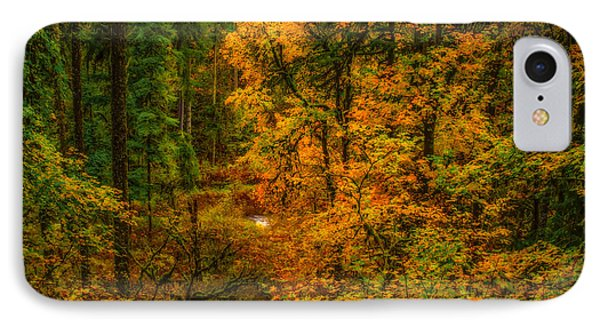 IPhone Case featuring the photograph Dark Forest by Dennis Bucklin