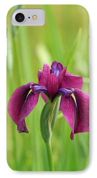 Dark Magenta Iris IPhone Case