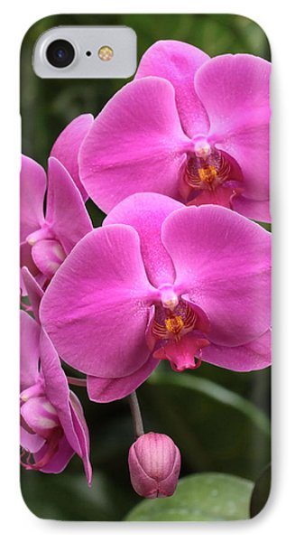 IPhone Case featuring the photograph Dark Pink Moth Orchids by Harold Rau